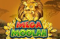 mega moolah slot microgaming